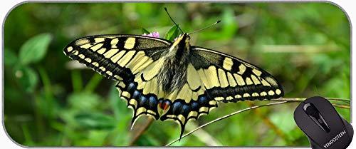 XXL Gaming Podkładka pod mysz Duża podkładka na biurko, motyl owad skrzydła Wildlife Bug Jasne Małe Spersonalizowane Prostokąt Gaming Podkładki pod mysz