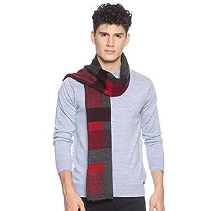 513 Men Acrylic Woolen Casual Winter Wear Checkered Knitted Warm Premium Mufflers Red 3 41P92hQRt4L. SL500 . SS300