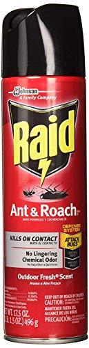 Raid Ant & Roach Killer Insecticide Spray-Outdoor Fresh - 17.5 oz, Clear