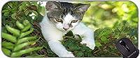 長いXXLマウスパッド、子猫の動物かわいい猫滑り止めベースロングXXL大きなゲームマウスパッド