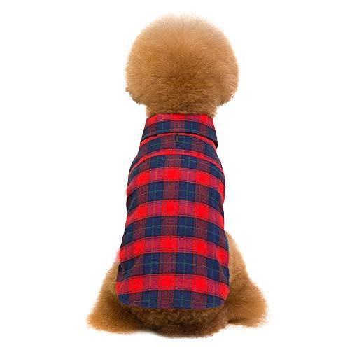 Amphia - Hund Hoodie,Kariertes Hemd - Pet Kleidung Plaid Teddy Dog Shirt Mode Zwei-Bein-Shirt mit Zugloch(Rot,M)