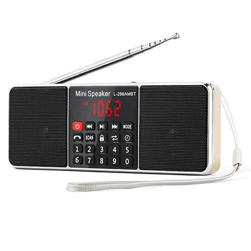 L-288 Radio portátil FM Am con Altavoz estéreo Bluetooth, Temporizador de...