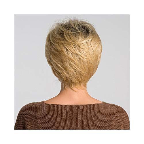 RZL Perruques de Mode Mélange de perruque synthétique 50% de cheveux humains for les femmes, Perruque Cosplay de coupe Pixie Cut Blonde Ombre Grey Cut, 2 couleurs 6 pouces