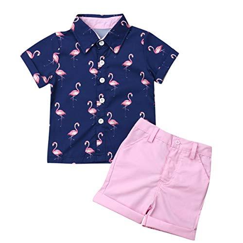 Toddler Baby Boy Summer Outfits Set Gentleman Button-Down Short Sleeve Shirt Blouse Tops + Solid Shorts Pants (Flamingo t-Shirt + Pink Shorts Navy, 3-4 T)