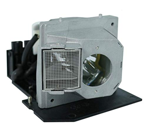 GOLDENRIVER SP.83C01G001 BL-FS300B Projector Replacement Lamp Compatible with OPTOMA EP1080 EP910 H81 HD7200 HD80 HD8000 HD8000-LV HD800X HD803 HD806 HD81 HD81-LV HD930 HD980 HT1080 HT1200 TX1080 Bl Fs300b Replacement Lamp
