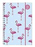 Collegetimer Flamingo 2018/2019 - Schülerkalender A5 - Weekly - Ringbindung - 224 Seiten