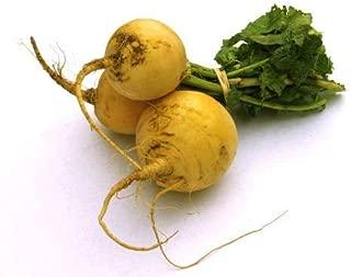 Pumpkin Seed 8 Seed Cucurbita Gold Saucer Shape Cushaw Vegetable Garden Hot B090