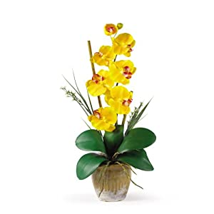 Nearly Natural 1016-GY Phalaenopsis Silk Orchid Flower Arrangement, Yellow,9x6x21