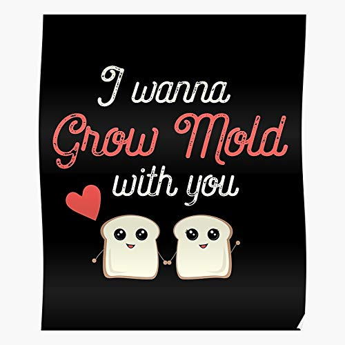 Tranglunar Love Day Food I Valentines Puns You Funny Kawaii Impressive Posters for Room Decoration Printed with The Latest Modern Technology on semi-Glossy Paper Background