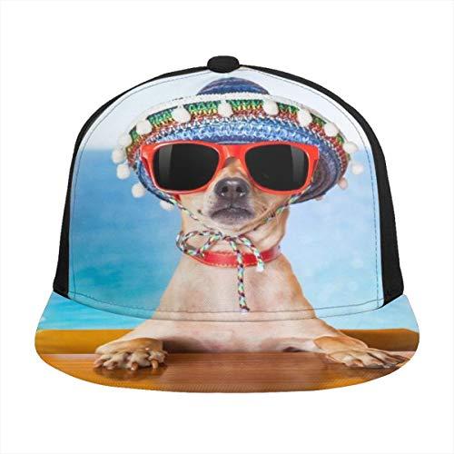 FONDSILVER - Gorra de béisbol ajustable para cachorro con gafas de sol, visera de algodón para deportes al aire libre, hombres y mujeres, color negro