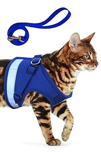 AEITPET Katzengeschirr katzenleine Geschirr für Katzen Ausbruchsicher Welpengeschirr Weich Kaninchengarnitur Katzen Air Mesh Verstellbar Hundeweste Harness (S, Blau)