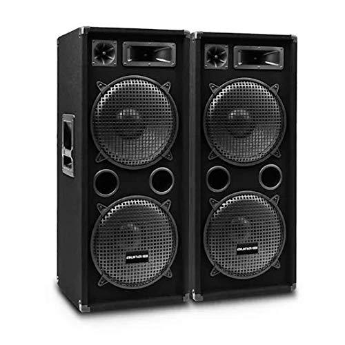 auna Pro PW - Passive PA-Lautsprecher PA-Boxen, 2er-Set: 2 x PA-Box, 2 x 38 cm (15