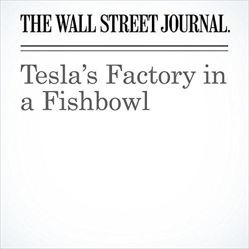 Tesla's Factory in a Fishbowl copertina