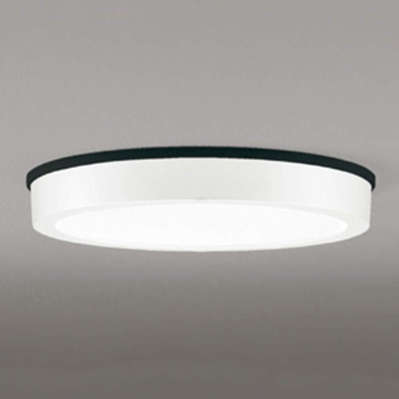 年齢悩みいくつかのOG254807 オーデリック LEDアウトドアシーリングライト