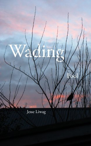 Wading Pool (English Edition)