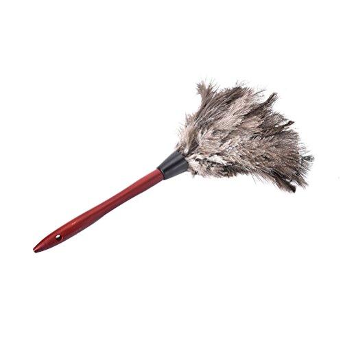 XKMY Cepillo de polvo caliente nuevo natural otoño de piel de avestruz pluma anti estática plumero mango de madera limpieza del hogar ventilador de coche muebles limpiador de polvo