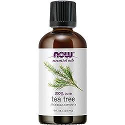 Tea Tree essential oil health benefits