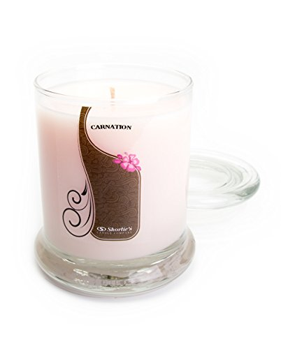 Pure Carnation Candle - Medium Pink 10 Oz. Highly Scented Jar Candle - Made with Essential & Natural Oils - Flower & Floral Collection