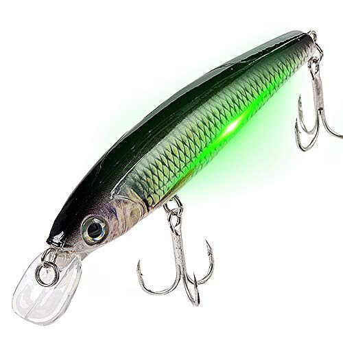 watalure Luminous Vibrating Jerkbait LED Minnow Fishing Lures for Bass Trout Freshwater Saltwater Electric Lures USB Rechargeable Wobbler (Comon Jerkbait)
