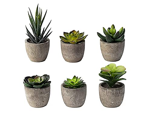 6 Small Fake Succulents Plants Artificial Centerpiece Faux Indoor Work Home Office Decor Women Cute Aesthetic Succulent Plant Potted Desk Bedroom Mini Coffee Table Decorations Living Room Flowers