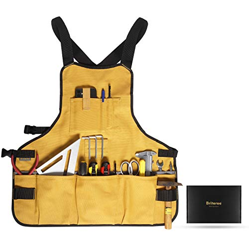 Briteree Work Tool Apron for Men and Women, Torso Length with 21 Tool Pockets, Gift for Woodworker, Durable Canvas Bib Apron For Carpenters, Mechanics, Painters, Gardeners and DIY Enthusiasts
