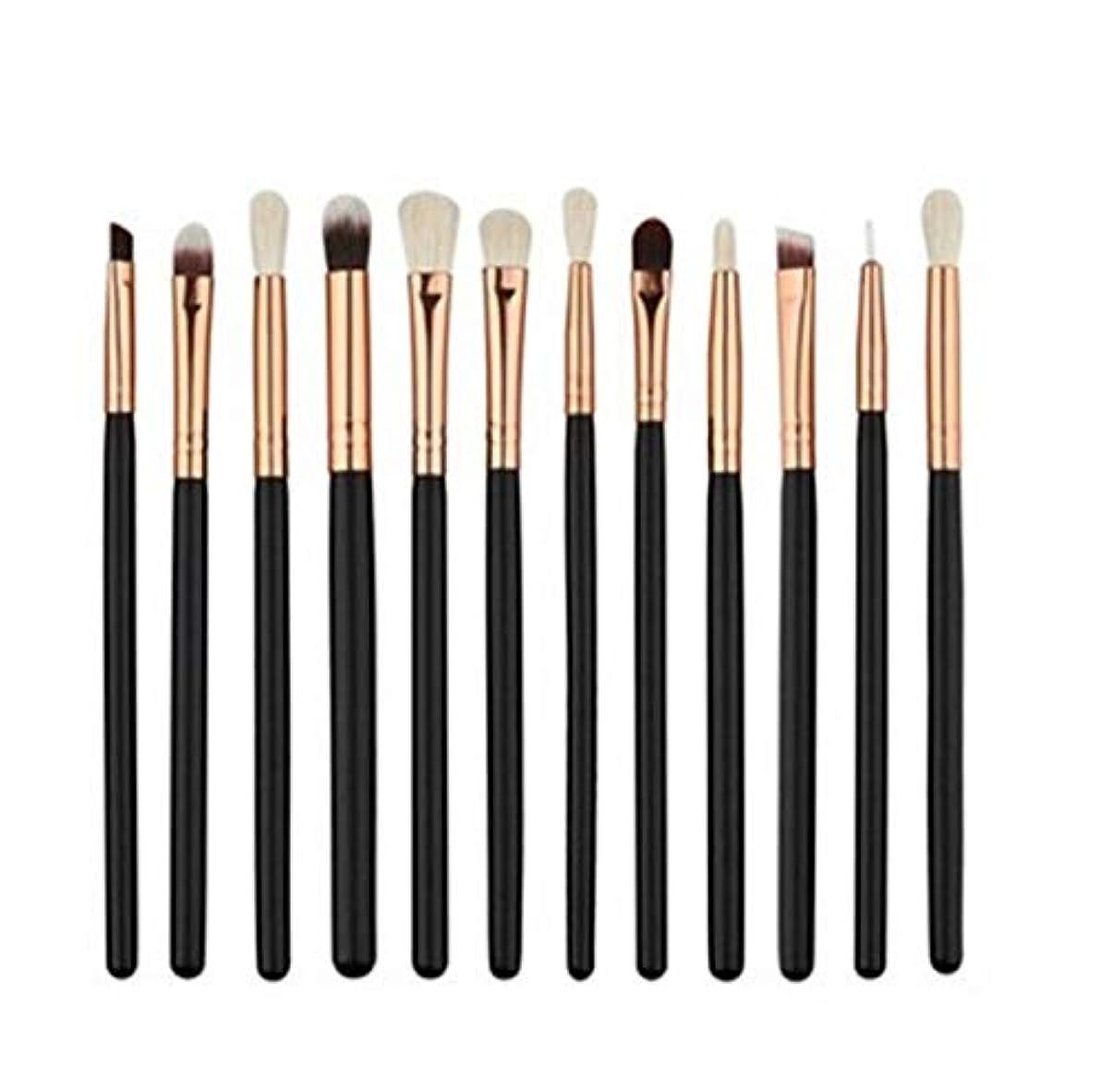 砲撃前効率Meeioupl 化粧ブラシセット12ピースセット化粧ブラシプロの化粧ブラシ小さなポータブルギフト化粧ブラシ高品質ソフトブラシ 品質保証 (Color : ブラック)