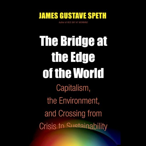The Bridge at the End of the World audiobook cover art