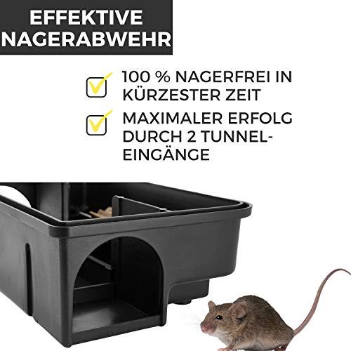 2 x Köderstation Ratte I Kinder- und Haustiersicher I Effektive Köderbox Ratten für Rattengift, Giftköder I Rattenköderstation, Rattenköderbox Haus, Garten I Auch für Maus I Köderboxen Ratten Mäuse - 2