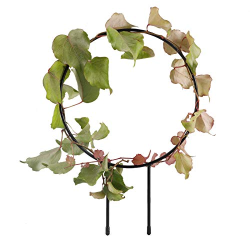 æ— 4Pcs Metal Garden Trellis,Small Garden Plant Support Stake,Heart-Shaped/Round Iron Plant Support Frame, Plant Cage for Potted Plants Climbing Vines Ivy Cucumbers Clematis