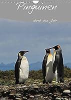 Mit Pinguinen durch das Jahr (Wandkalender 2022 DIN A4 hoch): Dieser Pinguin Kalender begleitet Sie durch das Jahr und bietet genuegend Platz fuer Terminnotizen (Planer, 14 Seiten )