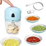 Osail - Mini tritatutto elettrico portatile da 260 ml, mini tritatutto elettrico senza fili, mini robot da cucina Dicers, mini tritatutto elettrico per carne, cipolla, verdure (blu)