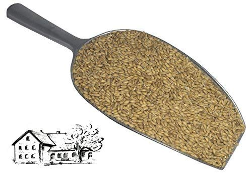 Dinkel 5 kg (Urdinkel) direkt vom Dinkelhof Horstmann, aktuelle Ernte 2020, Kostenloser Versand