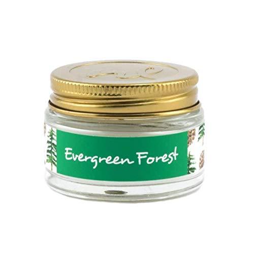 Northern Lights Fragrance Palette Evergreen Forest 1oz Mini Glass Jar Candle