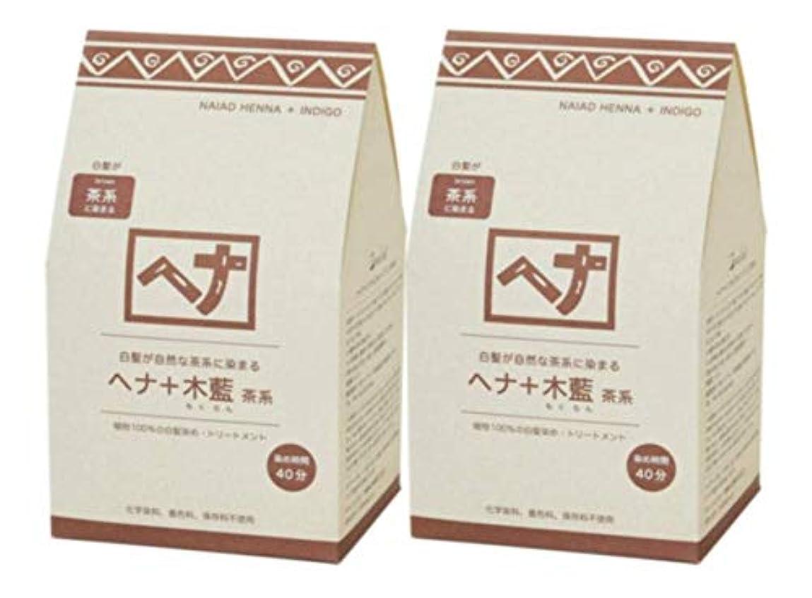 有効アプローチピービッシュNaiad(ナイアード) ヘナ+木藍 茶系 400g 2個セット