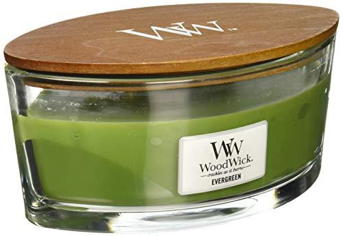 WoodWick 76142E Evergreen, ELIPSE