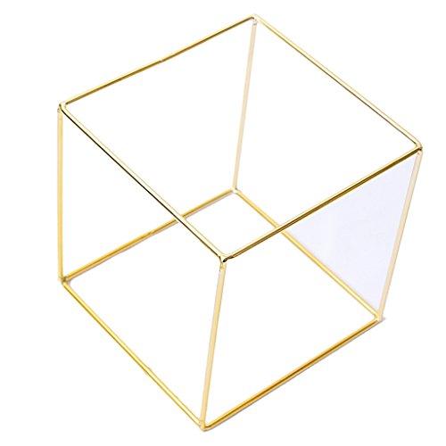 dailymall Kubischen Rahmen Hohlen Ständer Vitrine Eisen Metallrahmen Ohrring Hängen Rack - Gold - 15x15x15cm