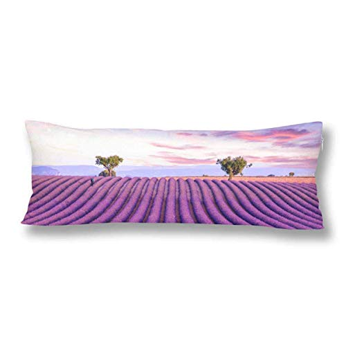 CiCiDi Body Pillow Case 5ft(50cm X 150cm) Lavender Field Summer Sunset Landscape with Tree Soft Cotton Machine Washable with Zippers Maternity/Pregnancy Pillow Cover