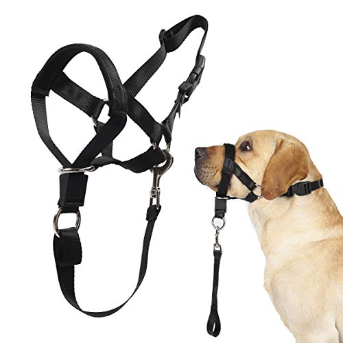 Dog Head Collar, No Pull Training Tool for Dogs on Walks, Includes Free Training Guide, Soft Padding, 5 (L, Black)