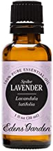 spike of lavender