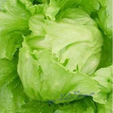 100pcs américains fruits et légumes de semences de laitue laitue semences Bonsai graines balcon pour la maison et le jardin 150 / sac 49%