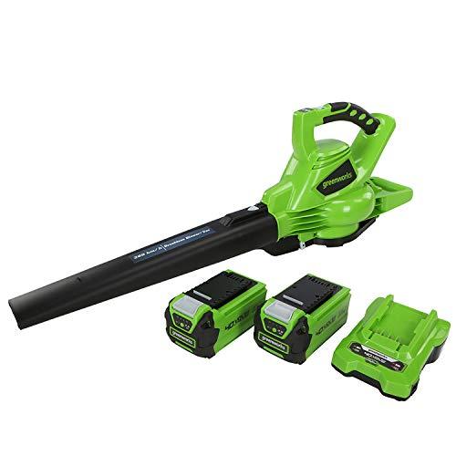 Greenworks Aspiradora sin cable y soplador de hojas 2en1 GD40BVK2X (Li-Ion 40V 280...