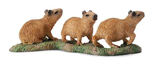 Kapibara mlode