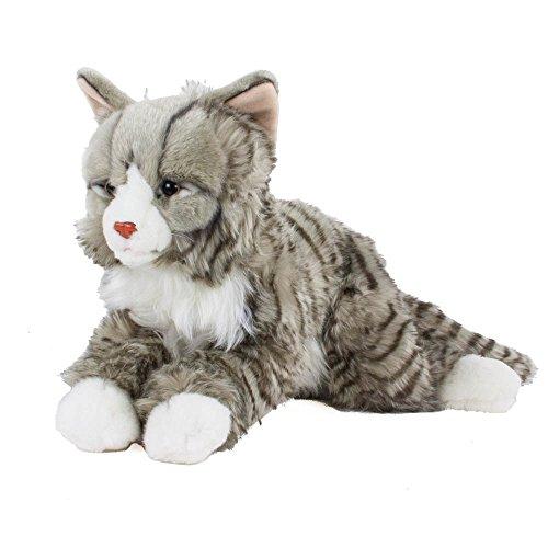 Teddys Rothenburg Kuscheltier Main Coon norwegische Katze liegend grau getigert 38cm Plüschkatze Uni-Toys