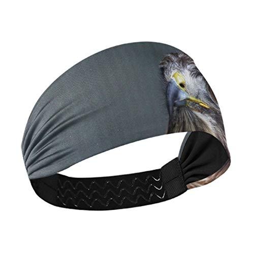 Diadema ancha para mujer Buzzard Sarich Buteo Buteo Predator Peak Eye, banda elástica antideslizante para correr, fitness, baloncesto, baile, se adapta a todos los hombres y mujeres