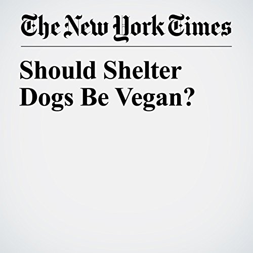 Should Shelter Dogs Be Vegan? copertina