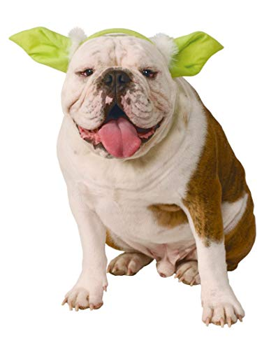 - Star Wars Yoda Hund Kostüme