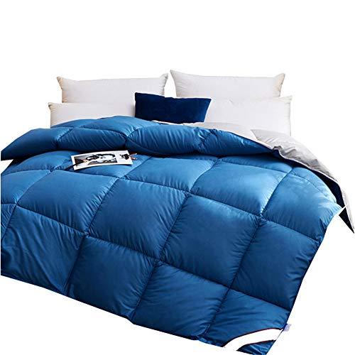 Wxyfl Bedding Bettdecke Daunendecke 220X240 cm Ganzjahres Daunen Decke Hypoallergen Daunen Bettdecke Steppdecke Atmungsaktive & Hautsympathische 3KG,Blau,180x220cm