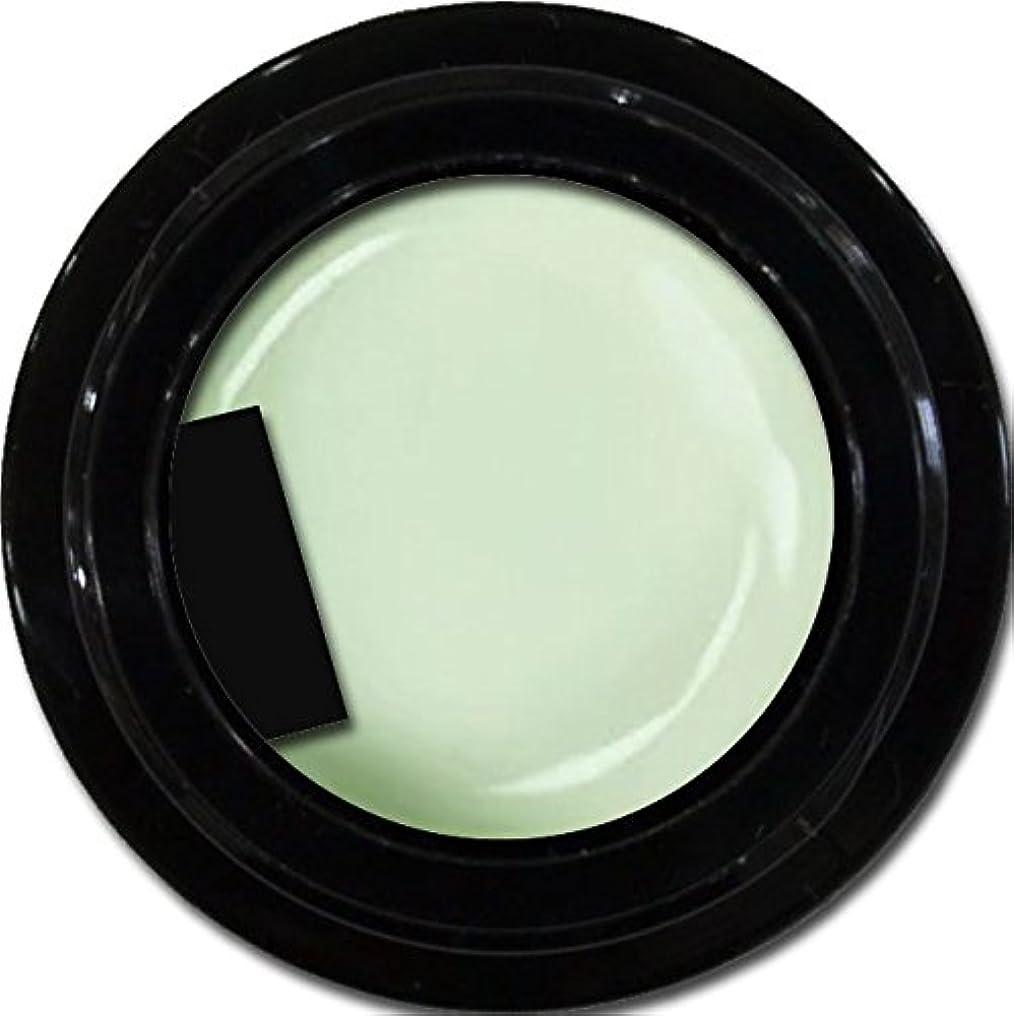 農村ゲーム試みるカラージェル enchant color gel M710 Pistachio 3g/ マットカラージェル M710 ピスタチオ 3グラム