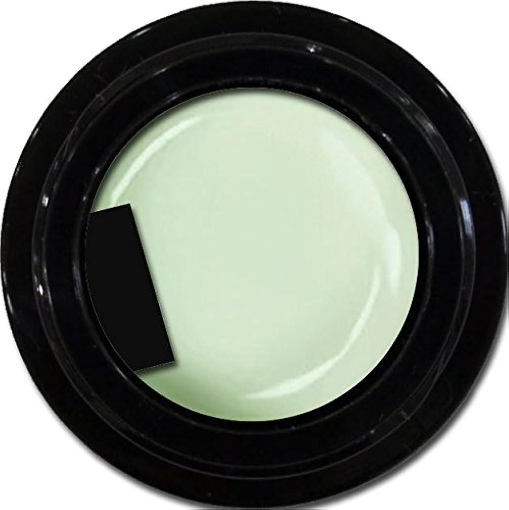 服を着る学校の先生カルシウムカラージェル enchant color gel M710 Pistachio 3g/ マットカラージェル M710 ピスタチオ 3グラム