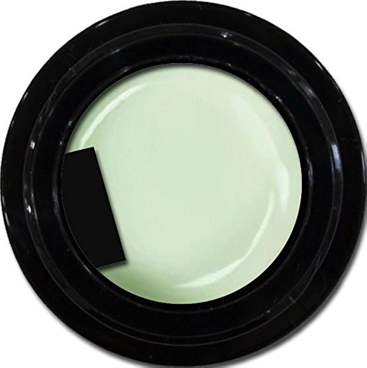 木材一時解雇する記念碑的なカラージェル enchant color gel M710 Pistachio 3g/ マットカラージェル M710 ピスタチオ 3グラム